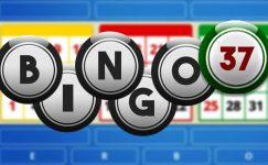 bingo 37