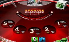 premier blackjack multi hand euro bonus gold